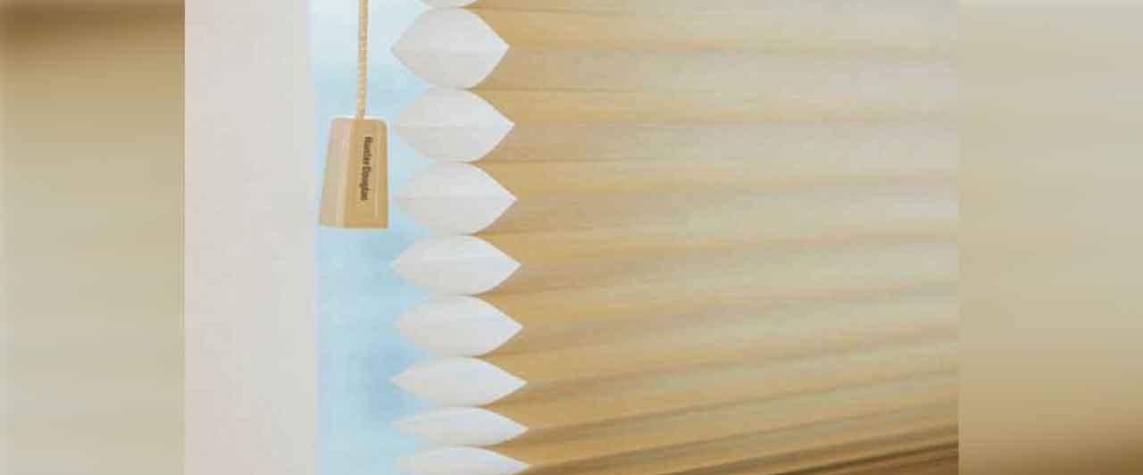 Hunter Douglas Duette Honeycomb Shades Dealer Price Goa